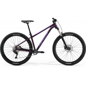 Cadru Merida BIG.TRAIL TFS...